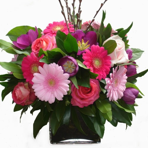 Flowers for Just Because