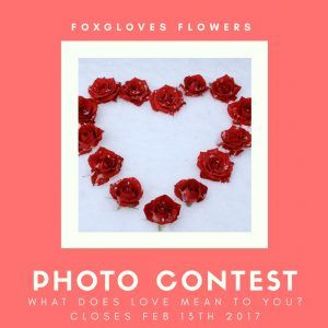 """""""What love means to you"""" Photo Contest"""